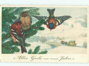 foreign Old Postcard EUROPEAN BIRDS ON THE TREE AT NEW YEAR AC2235