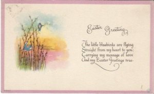 Bluebirds Perched on Pussy Willows Springtime EASTER Greeting Vintage Postcard