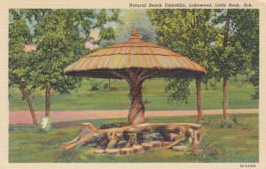 LITTLE ROCK , Arkansas , 30-40s; Natural Beach Umbrella, Lakewood