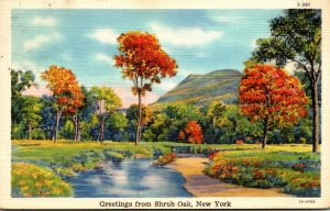 New York Greetings From Shrub Oak 1939 Curteich