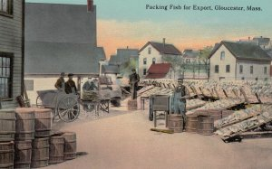Packing Fish for export , GLOUCESTER , Mass. , 1900-10s