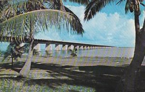 Seven Mile Bridge Overseas Highway The Keys Florida 1963