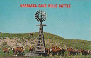 Nebraska Sand Hills Cattle