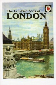The Ladybird Book Of London First Edition Childrens Postcard