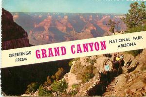 Postcard Grand canyon national Park Arizona Horse Path Trails  # 3502A