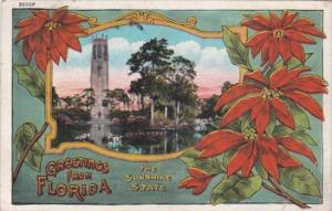Greetings From Florida The Sunshine State 1934