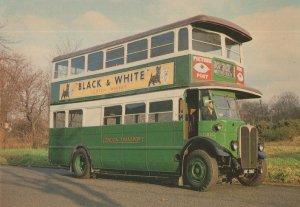Watford Heath ST Motor Bus No 203 Whisky Advertising Tram Postcard