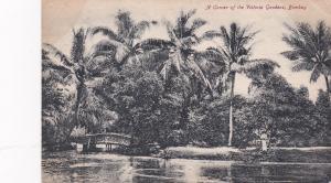 BOMBAY, India, 1900-10s; A Corner of the Victoria Gardens