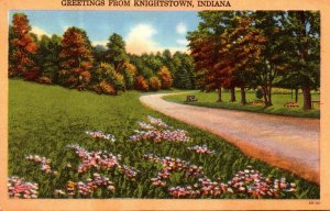 Indiana Greetings From Knightstown