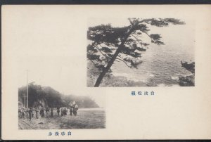 Japan Postcard - Japanese Views   DC2365