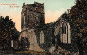 Muchross Abbey, Killarney, Ireland, Early Postcard, Unused