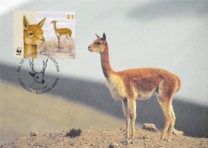 Argentinian Vicugna Deer WWF Stamp First Day Cover Postcard
