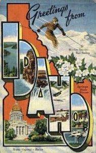 State Capital - Boise, Idaho ID