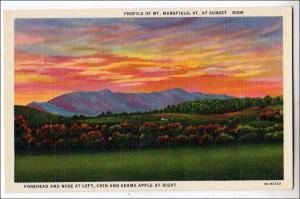 Profile of Mt Mansfield VT