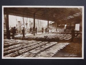 Scotland ABERDEEN Fish Market c1937 RP Postcard