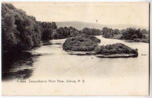 Susquehanna River, Sidney NY