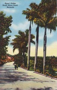 Royal Palms, South Shore Road, Bermuda, 40-60s