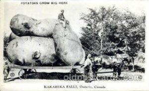 exaggeration Kakabeka Falls, Ont Canada Unused