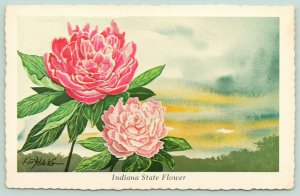 Indiana State Flower~Peony~Red & Pink Blossoms Against Sky~1973 Ken Haag Artist