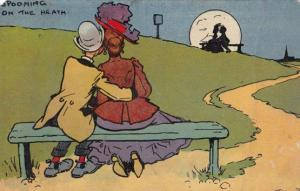 Spooning Kissing On The Village Green Heath Antique Comic Humour Postcard