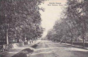 Connecticut New Canaan Oenoke Avenue Albertype