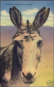 Mr. Burro, Earmarked For Victory, DONKEY (1940s)
