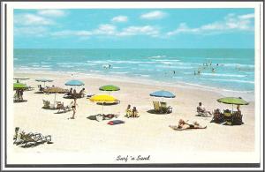 Surf 'N Sand Postcard