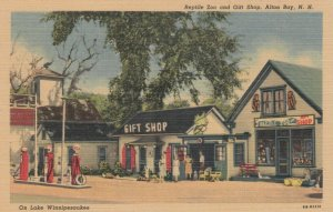 ALTON BAY , New Hampshire , 1930-40s; Reptile Zoo and Gift Shop