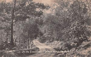 Scotland, UK Old Vintage Antique Post Card Trossachs Where Twines the Path Un...