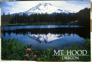 United States Mt Hood Oregon - posted 1996