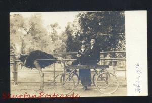 RPPC PASADENA CALIFORNIA OSTRICH FARM DRAWN WAGON OLD REAL PHOTO POSTCARD