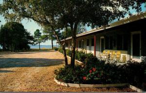 Florida Dunedin Caladesi Cove Motel