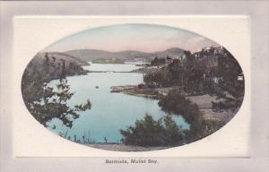 Bermuda Mullet Bay