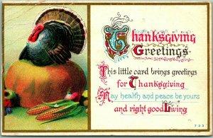 THANKSGIVING GREETINGS Embossed Postcard Turkey Sitting on Pumpkin 1911 Cancel
