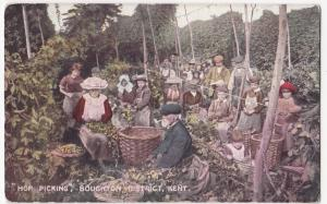Social History; Hop Picking, Boughton District, Kent PPC, Unused, By File & Sons