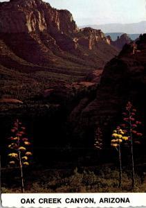 Arizona Oak Creek Canyon Schnebley Hill