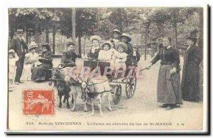 Bois de Vincennes Postcard Old Cars goats in Lake St Mande (goat goat)
