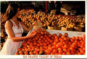 Texas Rio Grande Valley Fruit Stand