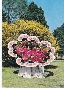 Traditional Fan Dancers, SOUTH KOREA, 50-70's