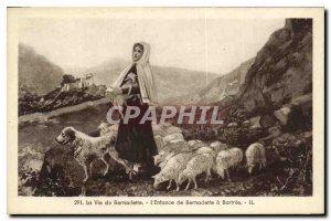 Old Postcard The Life of Bernadette Childhood Bernadette Bartres Sheep Dog