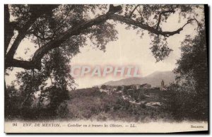 Old Postcard surroundings Castellar Menton Seen Through The Olive Trees