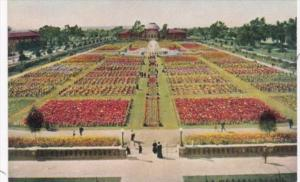 The Sunken Gardens At Exposition Park Los Angeles California