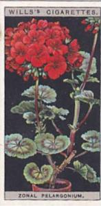 Wills Vintage Cigarette Card Flower Culture In Pots No 39 Zonal Pelargonium  ...