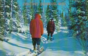 Winter Scene Greetings From Ironwood Michigan