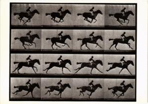 CPM EM21 Horse and Rider, Galloping 1887 EADWEARD MUYBRIDGE (d1195)