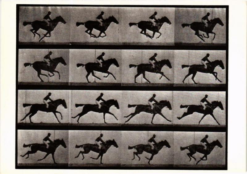 CPM EM21 Horse and Rider, Galloping 1887 EADWEARD MUYBRIDGE (d1195)