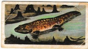 Trade Cards Brooke Bond Tea Prehistoric Animals No02