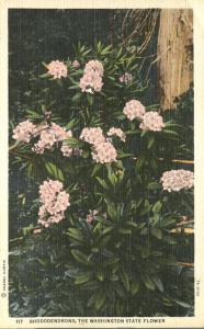 Rhododendrons - The Washington State Flower - Linen
