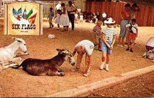 Texas Dallas-Fort Worth Six Flags Over Texas Animal Kingdom U S Section