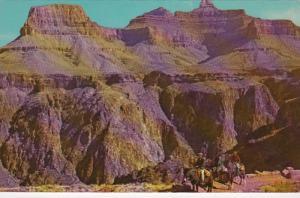 Arizona Grand Canyon Inner Canyon Kaibab Trail Fred Harvey